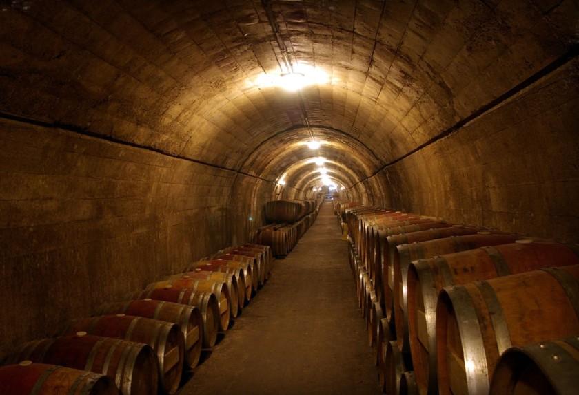 Torres_wine_cellars